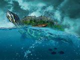 kura-kura-mengambang-di-air