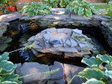 membuat-kolam-kura-kura