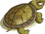 mewarnai-tempurung-kura-kura